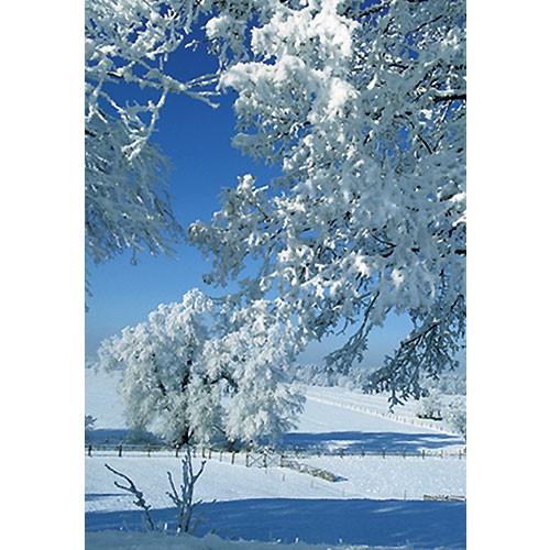 gru karte winter din a6 klappkarte winterlandschaft schnee geschenke gru karten weihnachten. Black Bedroom Furniture Sets. Home Design Ideas